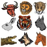 Set of animals Royalty Free Stock Images