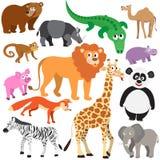 Set of Animals. On white background. Wild animals isolated Stock Images