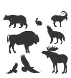 Set of animals,wild beasts, vactor Royalty Free Stock Image