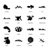 Set of ant, yarn ball, koala, arkansas, chameleon, moose head, wisconsin, goldfish, raccoon icons. Set Of 16 simple editable icons such as ant, yarn ball Stock Photography