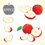 Set of apple fruit in various styles vector format Royalty Free Stock Photo
