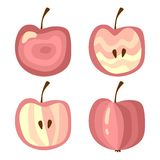 Set of apples  on white background. Royalty Free Stock Image