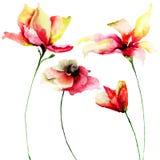 Set Aquarellblumen Stockbild