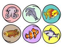 A Set of Aquatic Animal on Round Background Royalty Free Stock Images