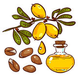 Set of Argan Oil Stock Images