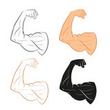 Set of Arm Royalty Free Stock Photography