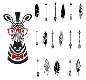 Set of arrows, vector illustration. Feathers hipster zebra in a modern style vector illustration