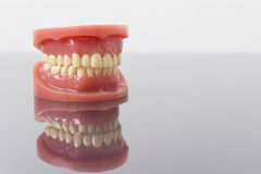 Set of artificial false teeth. Set of artificial lower and upper jaw false teeth viewed low angle across a wooden table with copyspace Stock Photos