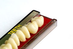 Set of artificial teeth Stock Image