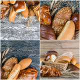Set of Assorted Breads and Wheat Royalty Free Stock Images