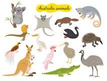 Set of australia animals on white background. stock illustration