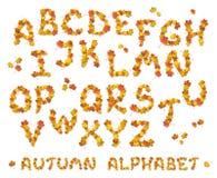 Set of autumn alphabet letters Stock Image