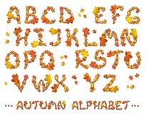 Set of autumn alphabet letters Royalty Free Stock Photos