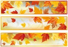 Set autumn banners,  Stock Photography