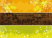Set of autumn banners. Colorful banners with maple leaves, design for posters, cards and websites Stock Photos