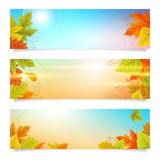 Set autumn banners business background Royalty Free Stock Photography