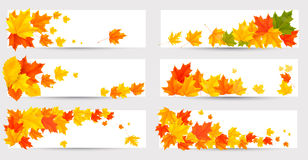 Set of autumn banners with colorful leaves. Back t Royalty Free Stock Images