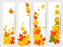 Set of autumn banners with colorful leaves. Back t Stock Image