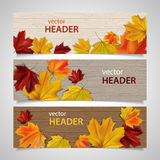 Set of autumn banners. Set of vector headers with leave on wooden background Royalty Free Stock Photos