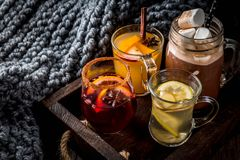 Set of 4 autumn drinks stock image