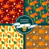 Set of autumn foliage seamless patterns. Fall theme backgrounds with leaves, mushroom and acorns in flat style. Flat vector illustration Royalty Free Stock Image