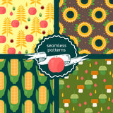 Set of autumn harvest patterns Royalty Free Stock Photography