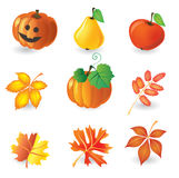 Set of autumn icons Stock Image