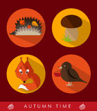 Set of autumn icons Stock Images