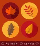 Set of autumn icons Stock Photos
