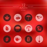 Set of autumn icons Stock Photo