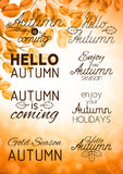Set of autumn labels and signs on an autumn background Stock Image