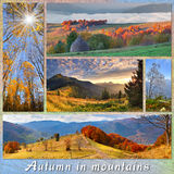 Set of autumn landscapes Royalty Free Stock Image