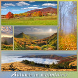 Set of autumn landscapes Royalty Free Stock Images