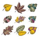 Set of autumn leaves stock illustration