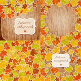 Set of autumn leaves backgrounds. Stock Photography