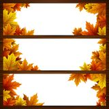 Set of autumn leaves banners stock illustration