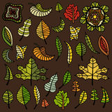 Set of autumn leaves Stock Photo