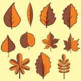 Set autumn leaves on yellow background. Vector illustration. Different autumn leaves Vector Illustration