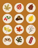 Set of autumn nature symbols Stock Photo