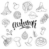 Set of autumn objects black and white mushrooms royalty free illustration