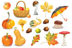 Set of autumn objects. Pumpkins different types, mushrooms, umbrella, apples and fall leaves. Vector illustration collection. Set of autumn objects. Pumpkins Stock Photography