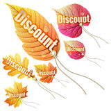 Set with autumn sale tags. EPS 10 Royalty Free Stock Photography