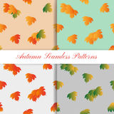 Set of Autumn Seamless Pattern with colorful Stock Photos