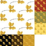 Set of autumn seamless pattern Royalty Free Stock Image
