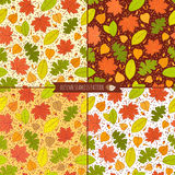 Set of autumn seamless patterns with seeds and leaves. Set of four autumn seamless patterns with seeds and leaves. Vector illustration Royalty Free Stock Images