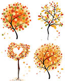 Set  autumn tree Royalty Free Stock Images