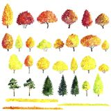 Set of autumn trees drawing by watercolor. Bushes, firs,pines and decidious, red and yellow foliage,isolated natural elements, hand drawn illustration Stock Image