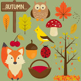 Set of autumn Royalty Free Stock Photography