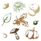 Set autumn vector Stock Images