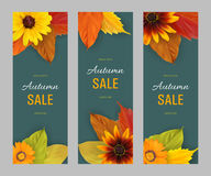 Set autumn vertical banners for sale. Set of vertical autumn banners for sale with autumn yellow, orange, red leaves and flowers fall colors on a dark background Stock Images